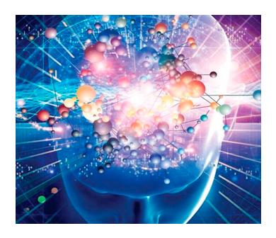 img-cerebro-2