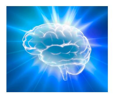 img-cerebro
